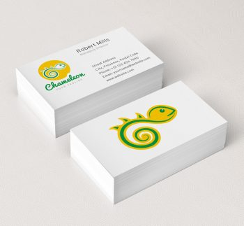 019-Chameleon-Logo-&-Business-Card-Template