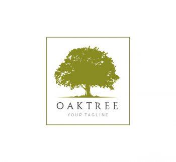 Oak Tree Logo & Business Card Template