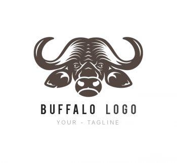 Buffalo Logo & Business Card Template