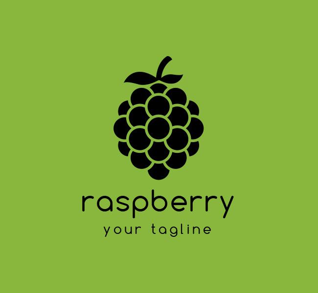Ready-Logo-Raspberry-Logo