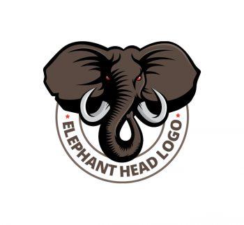 Elephant Head Logo & Business Card