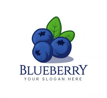 Blueberry Logo & Business Card