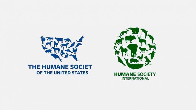 Best-NGO-Logo-Designs-for-Inspiration