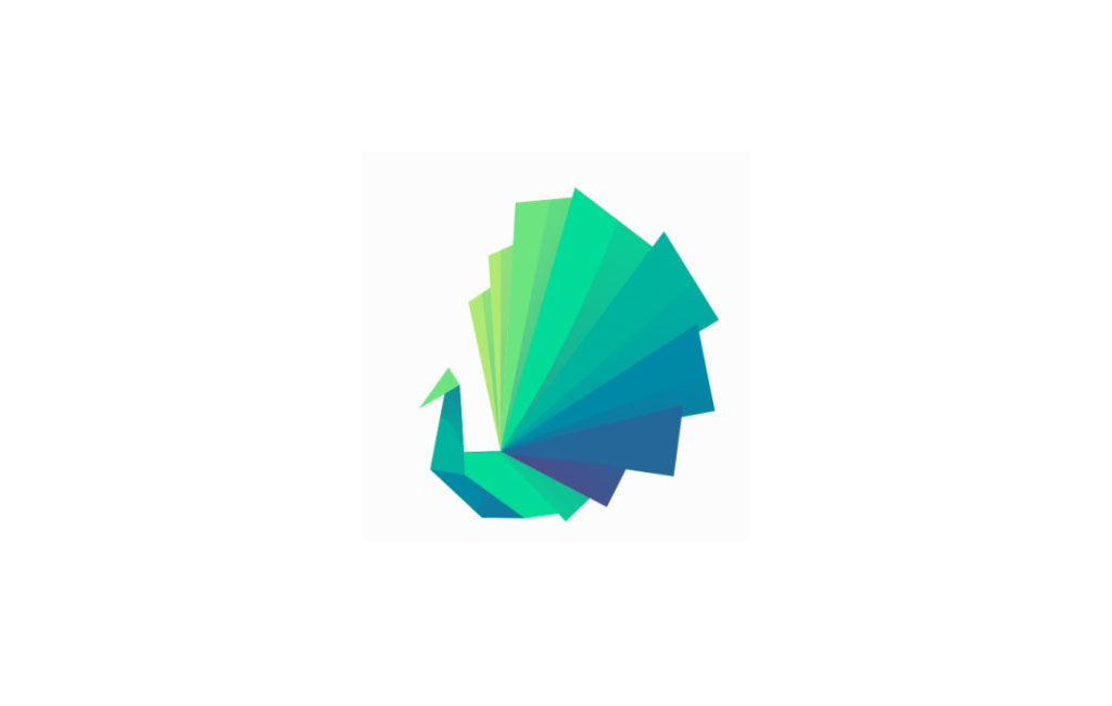 Logo Designs 5