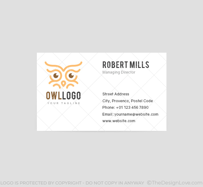 Owl eyes logo business card template the design love 032 owl eyes logo business card template colourmoves