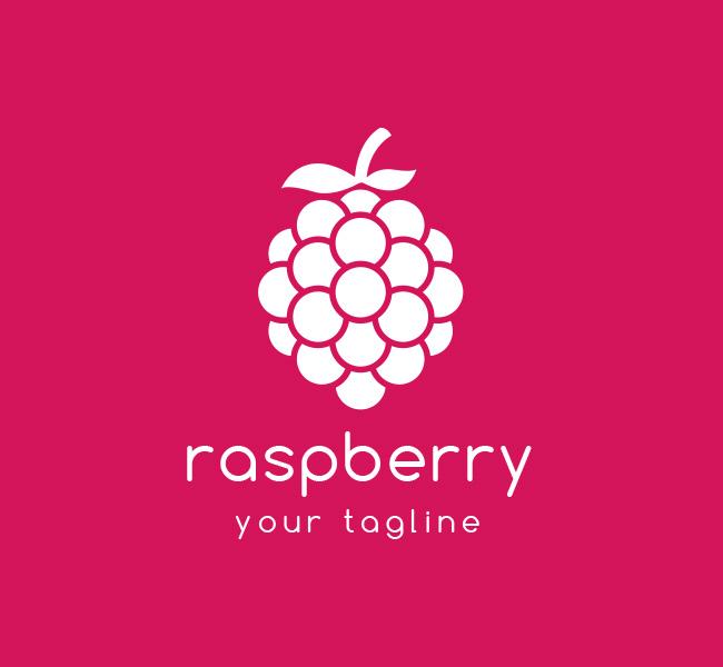 Pre-Made-Raspberry-Logo