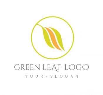 Green Leaf Logo & Business Card Template
