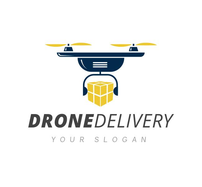 Drone-Delivery-Logo