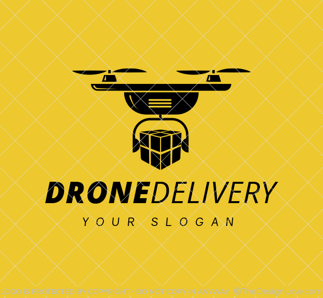 Stock-Logo-Drone-Delivery