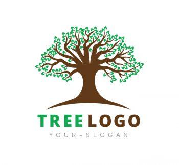 Tree Logo & Business Card Template