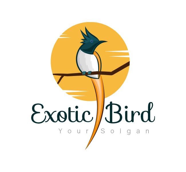 Exotic-Bird-Logo