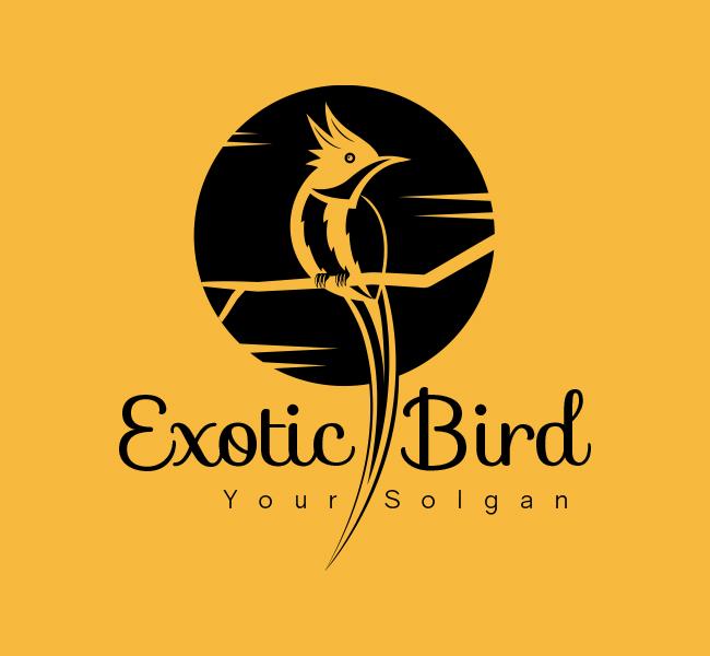 Exotic-Bird-Stock-Logo