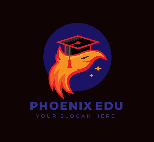 Phoenix-Edu-Start-up