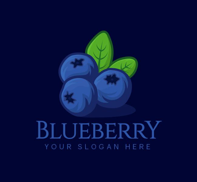 523-Blueberry-Logo-Start-up-Logo