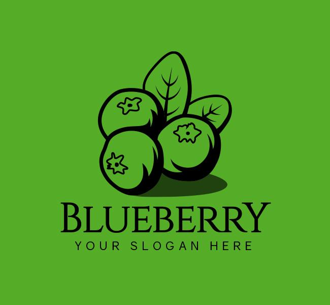 523-Blueberry-Logo-Stock-Logo