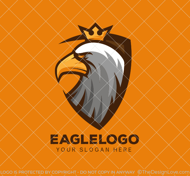 Eagle-Shield-Start-up-Logo