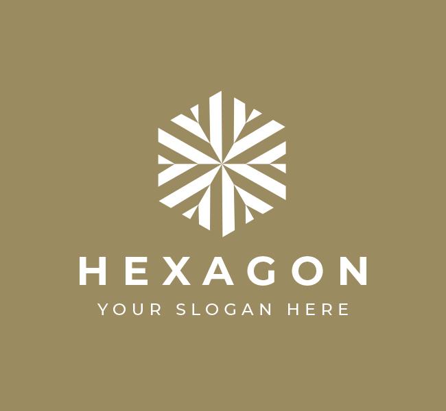 574-Hexagon-Pre-Designed-Logo