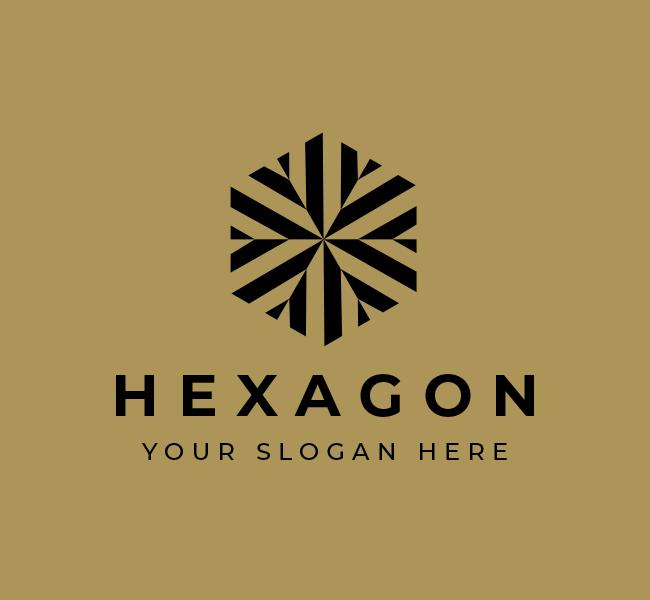 574-Hexagon-Start-up-Logo